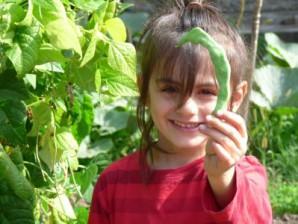 Le jardin participatif «Fridolin»