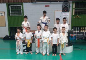 Les résultats du Kyokushinkaï à l'Open d'Alsace