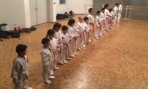 Compétition de Kyokushinkaï dimanche 12 mars