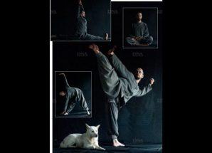 DNA – Le sonmudo, art zen