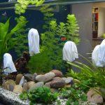 Les fantômes de l'aquarium